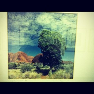 Reen's_Tree