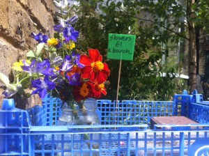 Flowers-For_Sale