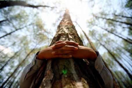 img_pod_boy-hugs-tree-trunk-Guinness-World-Record-Kathmandu